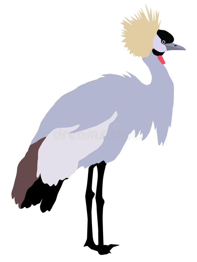 Free African Crowned Crane Royalty Free Stock Photos - 12556698