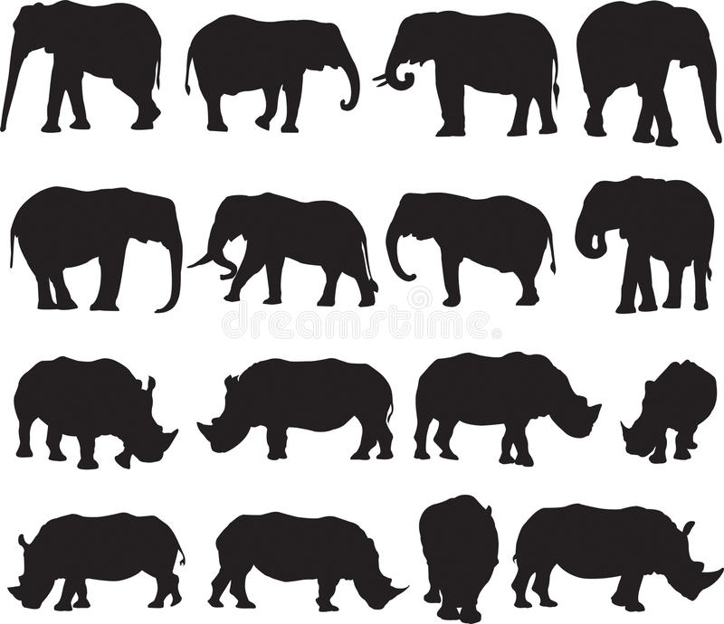 African elephant and white rhinoceros silhouette contour royalty free stock photography