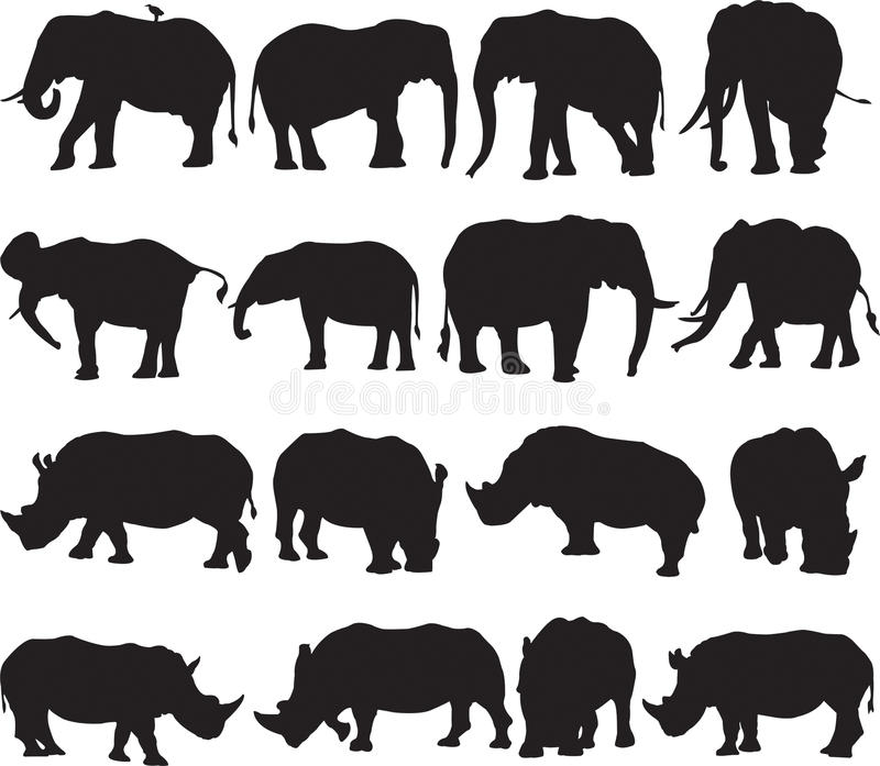 African elephant and white rhinoceros silhouette contour stock image