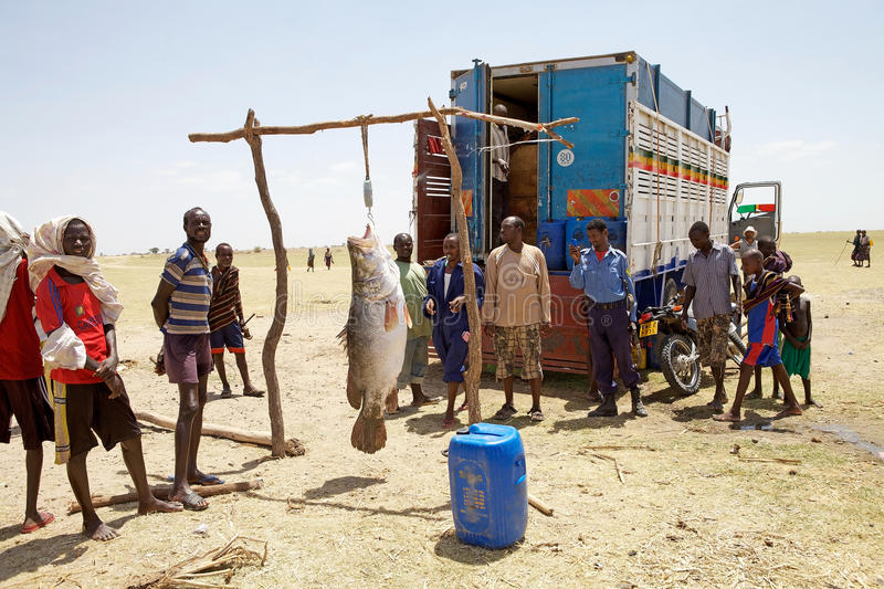 Download African fish editorial stock photo. Image of fishermen - 31148928