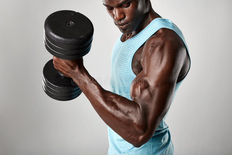 African fitness model exercising with heavy dumbbells. Shot of fit young man doing biceps curl with dumbbell against grey background. African fitness model stock photos