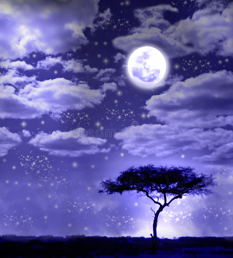 African landscape in moonlight. African landscape with acacia tree in moonlight with stars and moonlit clouds