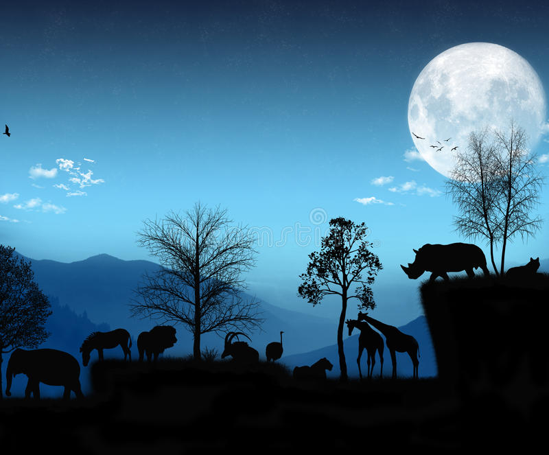 African Light Blue Atmosphere stock images