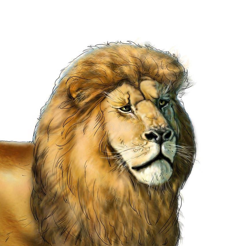 African lion vector illustration