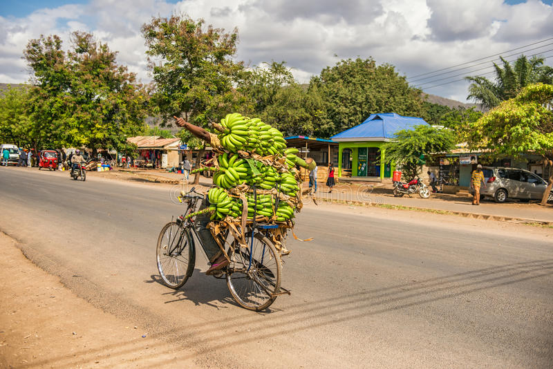 African man traveling on a bike with a bunch of bananas. MTO WA MBU, ARUSHA, TANZANIA - OCTOBER 22, 2014 : African man traveling on a bike with a bunch of royalty free stock images