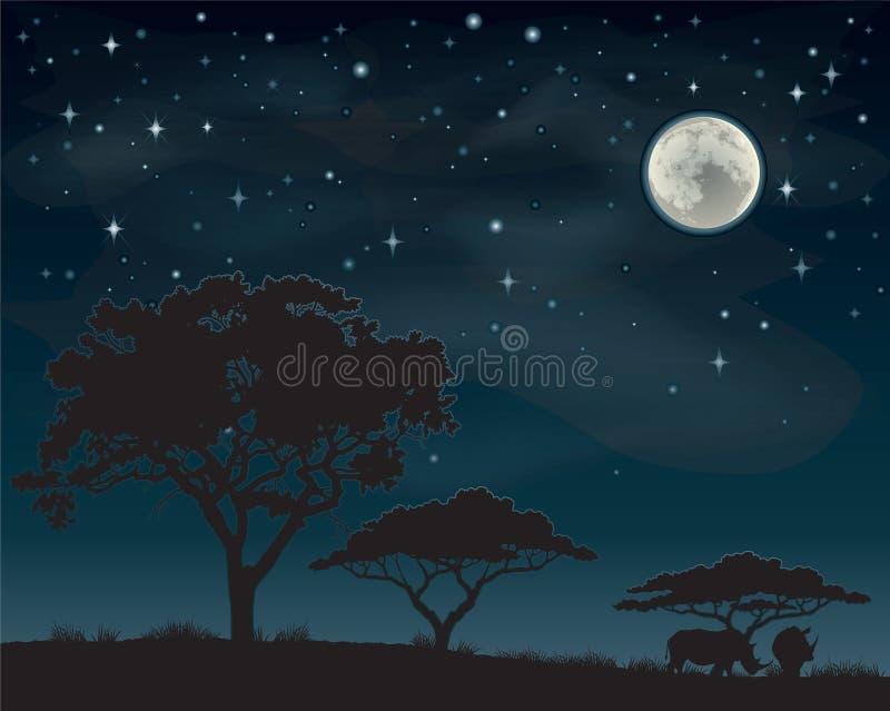 African Night Sky vector illustration