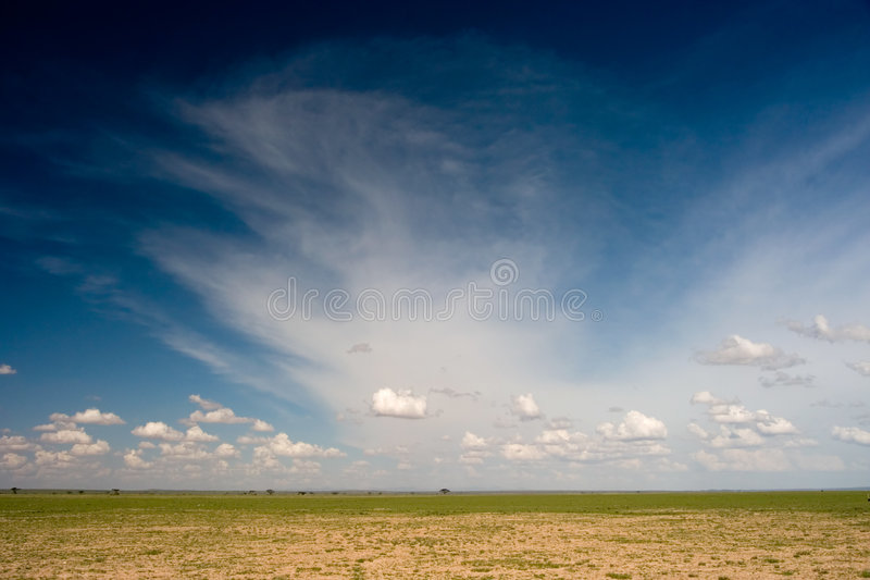 Download African Plain stock photo. Image of african, scenery, nature - 2917448