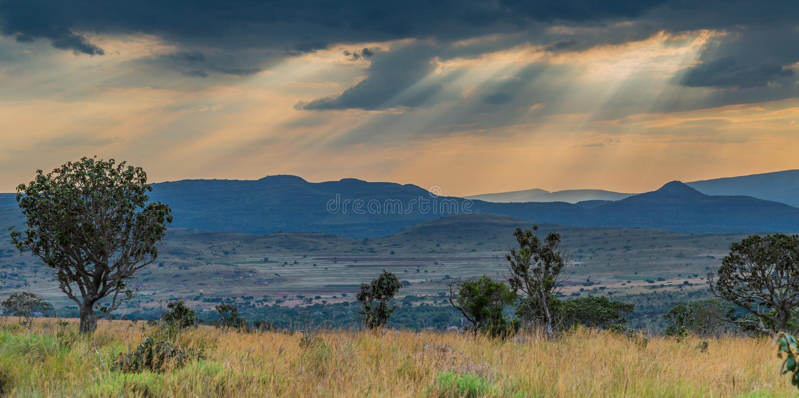 African plains. View over the wide South African savannah plains under a dramatic African sky royalty free stock photo