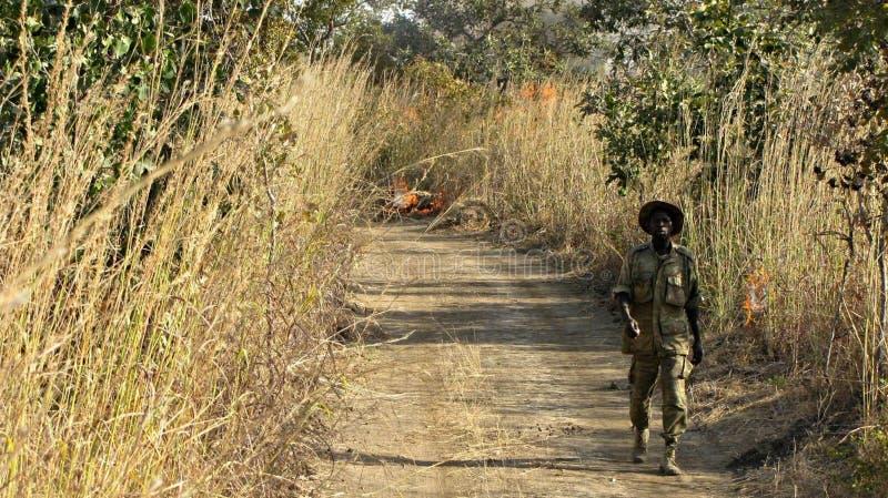 African Ranger Free Public Domain Cc0 Image