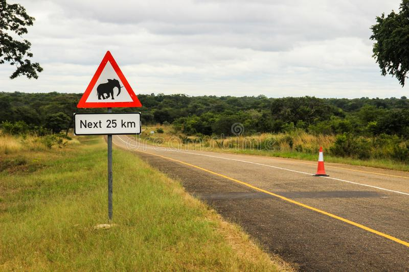 African road sign with the image of the animal - an elephant on the road royalty free stock image
