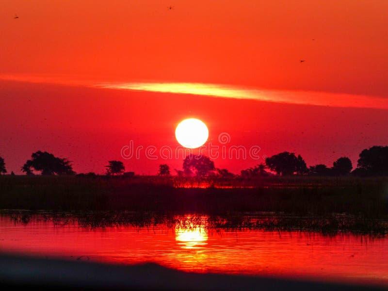 African safari sunset over the Chobe river. Botswanan African safari sunset over the Chobe river royalty free stock photos
