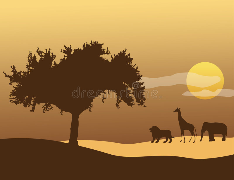 Download African Sky Stock Images - Image: 1423054