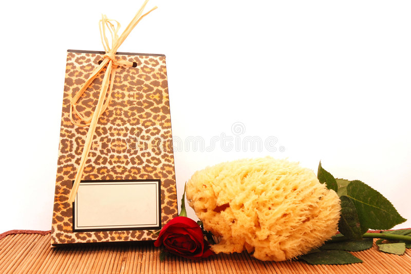 Download African spa essentials stock photo. Image of animal, blank - 4314604