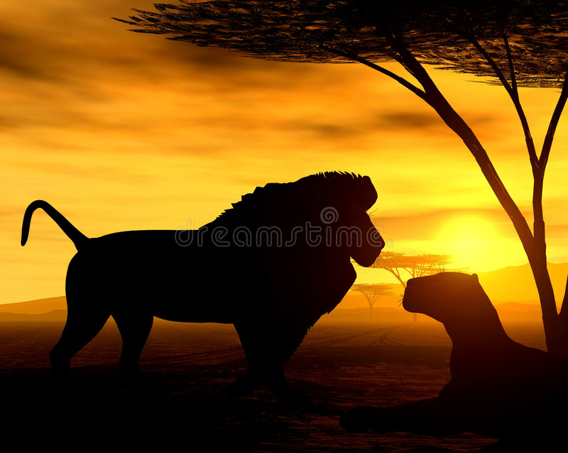 African Spirit - The Lions royalty free illustration