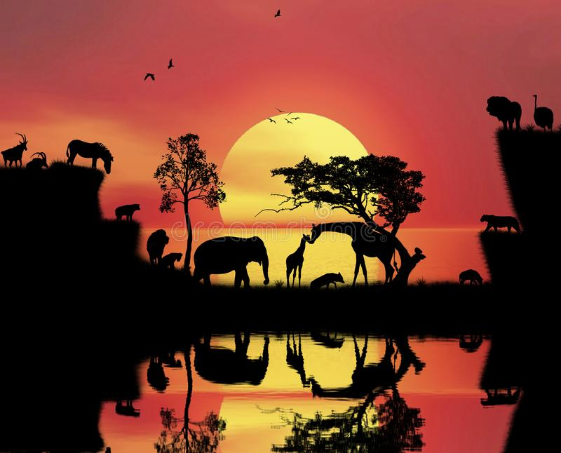African sunset landscape view moment royalty free stock photography