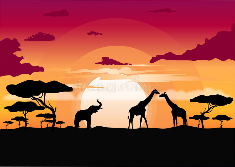 African sunset in the savannah with silhouette of animals royalty free illustration