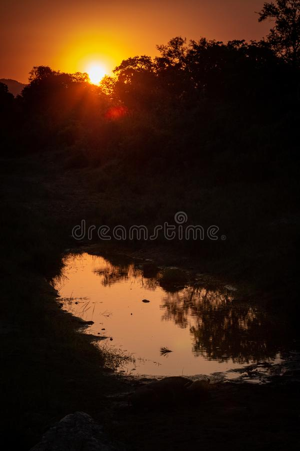 African sunset on water royalty free stock image