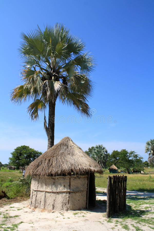 Free African Thatched Hut With Palm Tree In Northern Botswana Royalty Free Stock Photography - 46874787