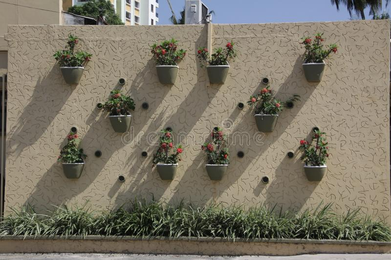 African wall garden special in city. African fashion garden wall from east Africa no else in the city stock photo