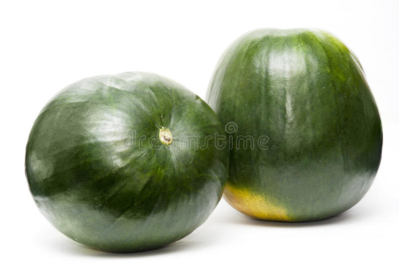 African Watermelon stock photos
