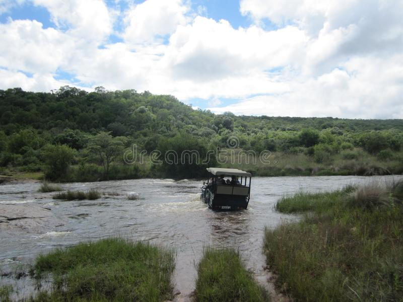 African Wildlife - Game drive - The Kruger National Park. Game drive vehicle crossing over a river in the water royalty free stock images