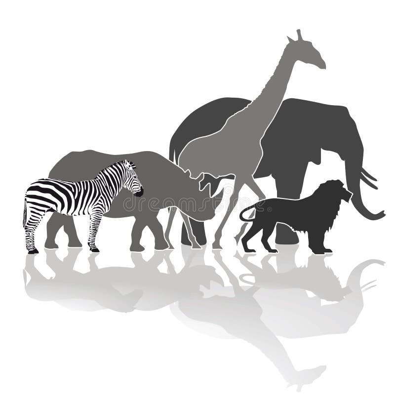 African wildlife vector illustration