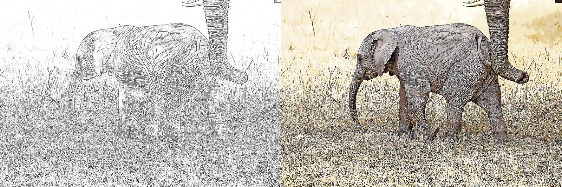 Africana del Loxodonta del elefante africano que dibuja para ser coloreado stock de ilustración