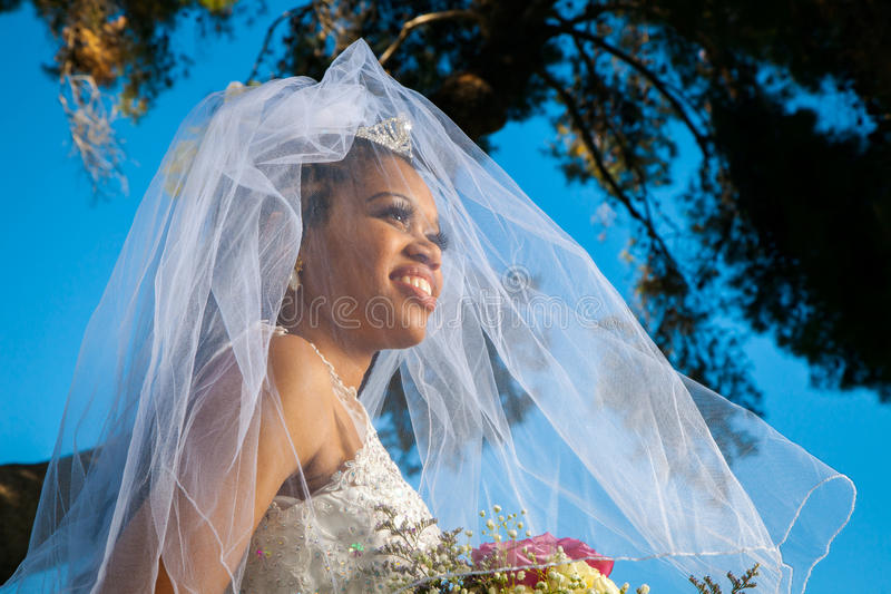 AfricanAmericanBrideUnderVeil. A stunning African American bride looks off to the distance with her veil over her face and blowing in the wind. The colors are royalty free stock image