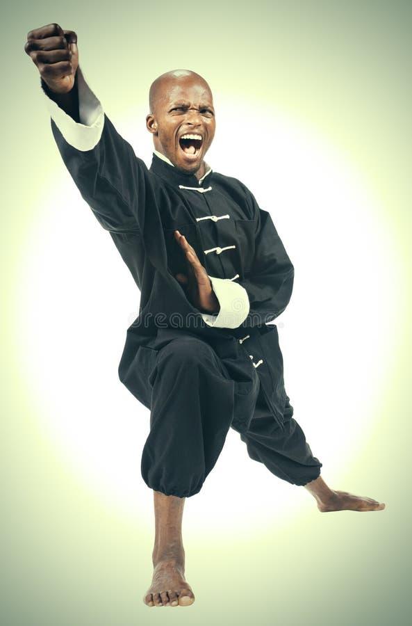 Africano di kung-fu fotografia stock libera da diritti