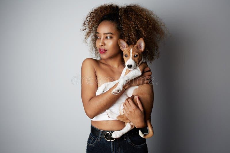 Africano negro hermoso femenino con el pelo afro que abraza su perro del basenji del perrito Amor entre el perro y el due?o En bl fotos de archivo