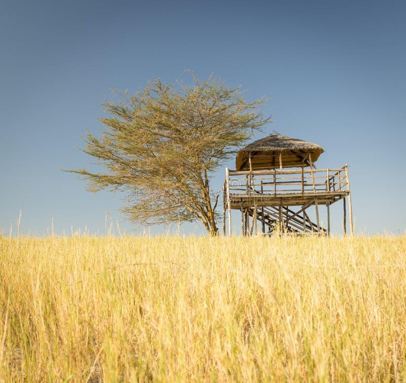 Africano Safari Hut fotografie stock
