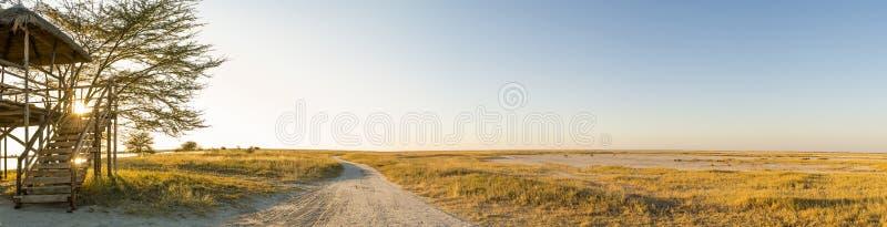 Africano Safari Panorama immagini stock libere da diritti