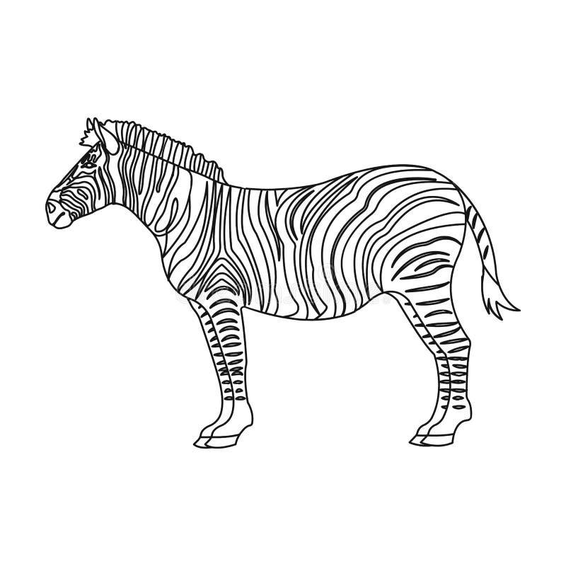 Africano, zebra do deserto Animal fender-hoofed selvagem, único ícone da zebra na ilustração do estoque do símbolo do vetor do es ilustração stock