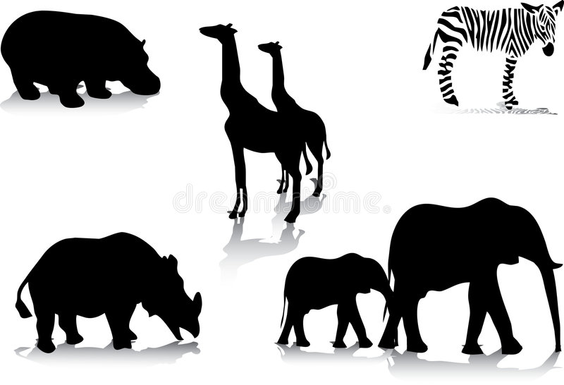 Africas animals stock illustration