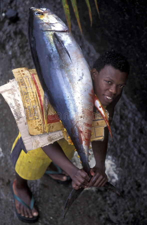 AFRIKA DE COMOREN ANJOUAN stock afbeelding