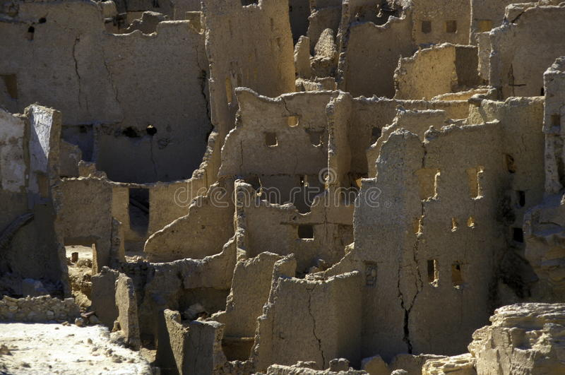 AFRIKA EGYPTEN SAHARA SIWA OAS arkivfoton
