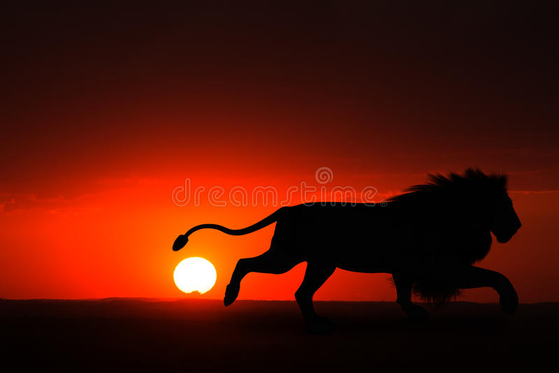 Afrika Mannelijk Lion Sunset Illustration stock illustratie