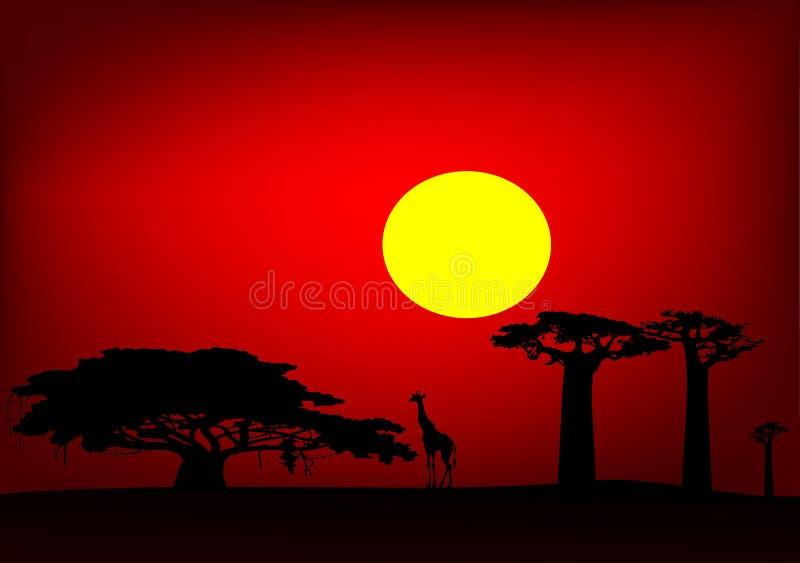 Afrika-Sonnenuntergang vektor abbildung