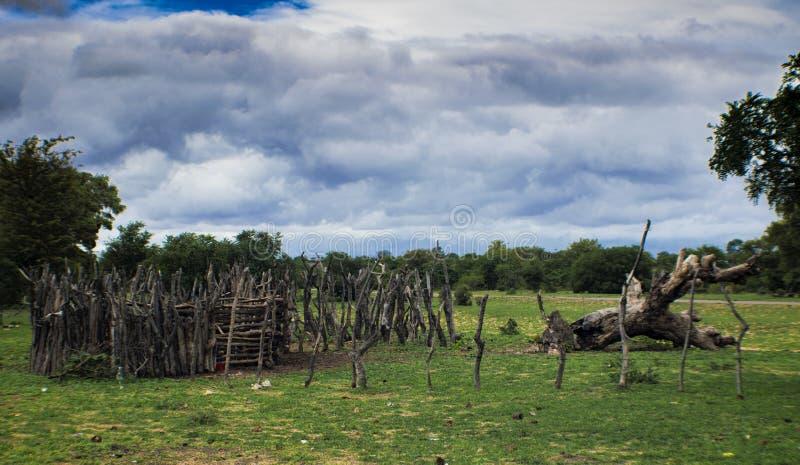 Afrika-Viehbestand-Kral stockfoto