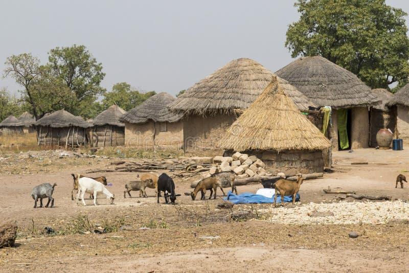 Afrikaans dorp in Ghana stock afbeeldingen