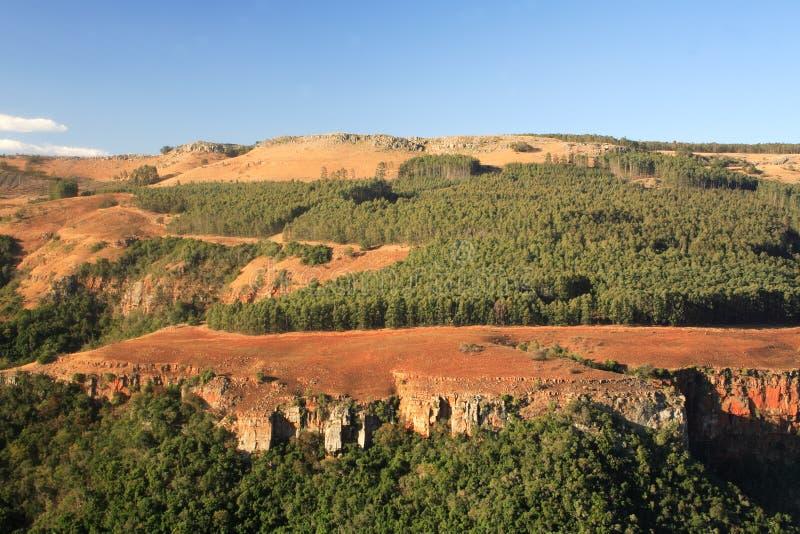 Afrikaans Landschap stock foto