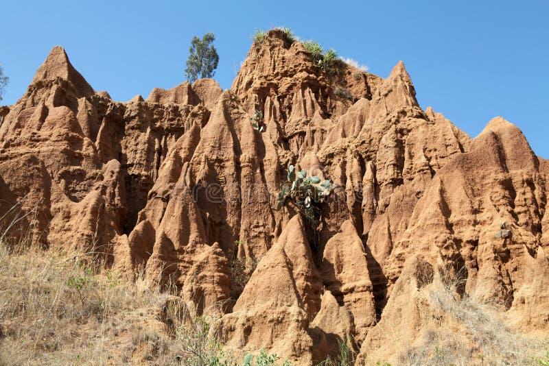 Afrikaans landschap royalty-vrije stock foto