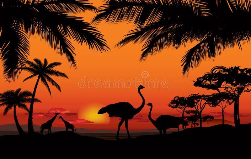Afrikaans landschaps dierlijk silhouet De achtergrond van de zonsondergang stock illustratie