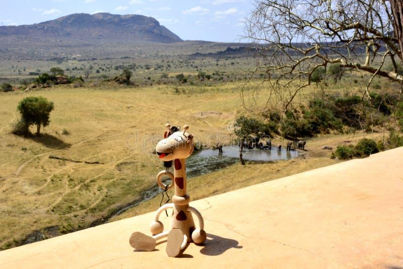 Afrikaans platteland met houten grappige giraf royalty-vrije stock foto's
