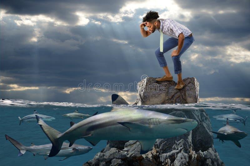 Afrikaanse Amerikaanse Zakenman Surrounded door Haaien stock afbeeldingen