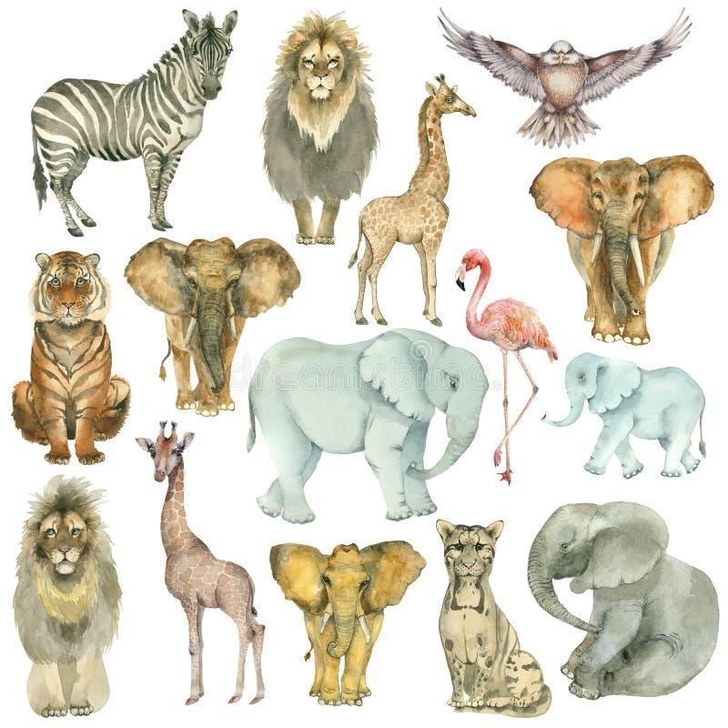 Afrikaanse diereninzameling royalty-vrije illustratie