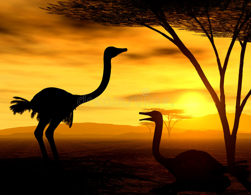 Afrikaanse Geest - de Struisvogels vector illustratie
