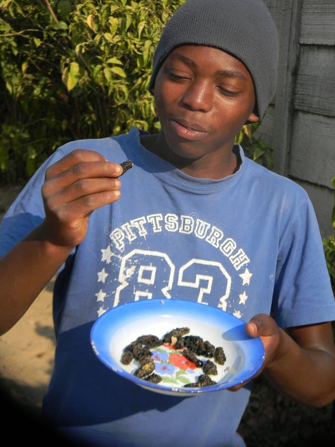 Afrikaanse jonge mens die rupsbanden eten stock afbeelding