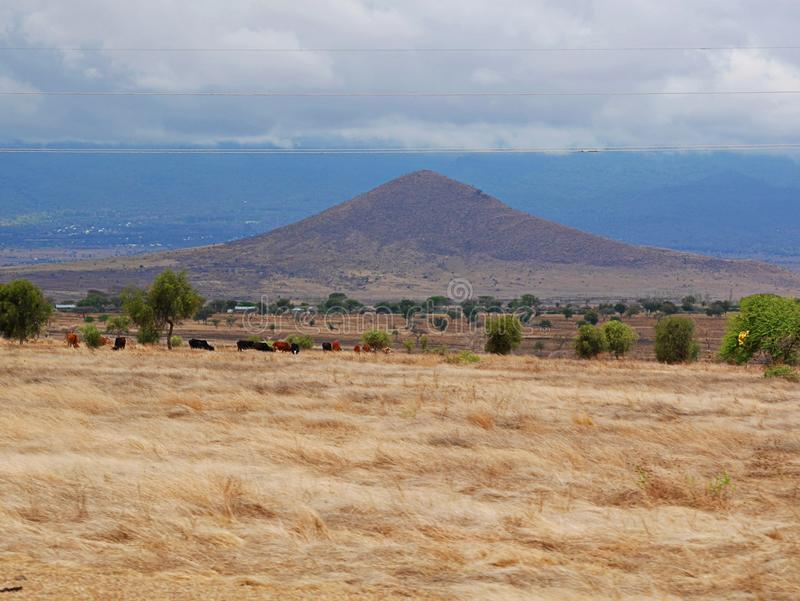 Afrikaanse landschapsmening van Tanzania stock foto