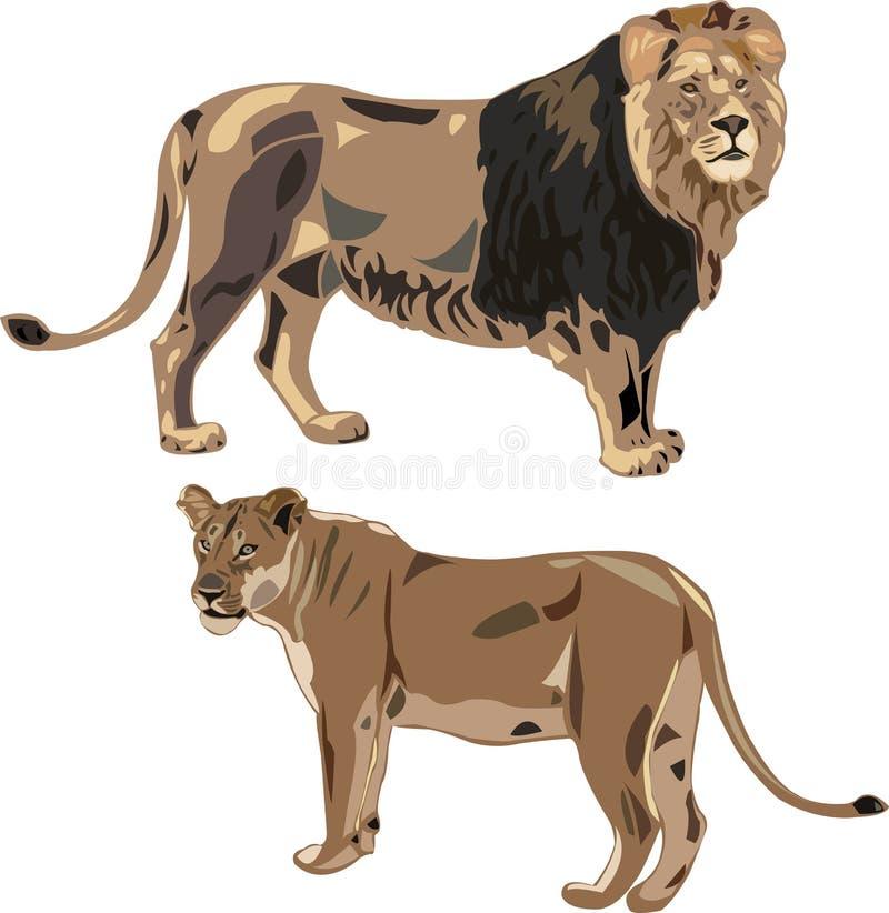 Afrikaanse leeuwen en leeuwin royalty-vrije illustratie